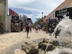De Calle Quinta Avenida, ook wel bekend als 5th Avenue, is het kloppende hart van Playa del Carmen. Aan deze uitbundige straat zijn vele restaurants, souvenirwinkels, kledingzaken en uitgaansgelegenheden gevestigd. Overdag is het hier vrij rustig. Maar wanneer de avond valt, verandert de Calle Quinta Avenida in een levendige omgeving waar toeristen en Mexicanen zich verzamelen voor ontspanning en vermaak. Street View, Playa Del Carmen, Street