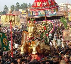 Chithirai Festival in Madurai Indian Wedding Photography, Couple Photography, Rath Yatra, Lion Pictures, Hindu Festivals, Madurai, Beautiful Blonde Girl, Hindu Deities, Krishna Art