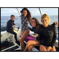 We swam with 22 wild sharks this morning and it was INCREDIBLE!!!!!! Help us save these beautiful creatures!  @oceanicramsey @hillaryharley @cheeklane @juansharks  #helpsavesharks #HappyHawaii #livelifetothefullest #meetashark #savesharks #savetheocean #ninadobrev @oneoceandiving @waterinspired @shells4sharks