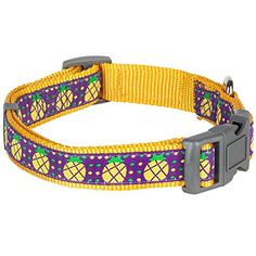 Blueberry Pet 3/8-Inch Yummy Sunny Pineapple Basic Polyester Nylon Puppy Dog Collar, X-Small - http://www.thepuppy.org/blueberry-pet-38-inch-yummy-sunny-pineapple-basic-polyester-nylon-puppy-dog-collar-x-small/