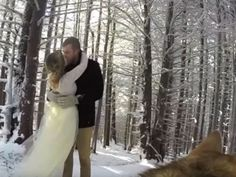 This couple let their dog be their wedding videographer (and she nailed it)