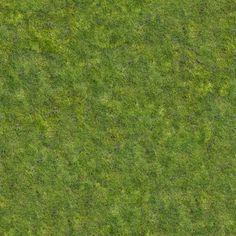 green_grass (30)