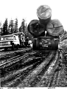 Logging Trucks Eatonville To Rainier 187 Three Wheel