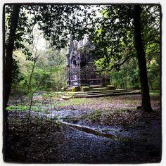 #photowalkitaly The Enchanted Wood. Bosco del Sasseto