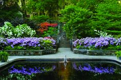 Glorious Gardens Tour 2015 - Day 2: Depart for the historic Winterthur house and gardens in northern Delaware. Here we will take a guided tram tour through the Azalea Woods, Magnolia Bend, and Enchanted Woods!