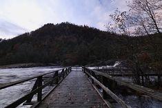 #autumn Railroad Tracks, Autumn, Explore, Photography, Photograph, Fall, Fotografie, Photo Shoot, Exploring