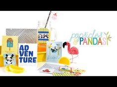 Bella Blvd | Popsicles & Pandas Collection Vidoe