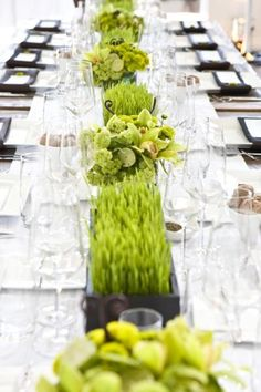 white and green table centerpieces and runner Grass Centerpiece, Green Centerpieces, Succulent Centerpieces, Bar Mitzvah, Nature Inspired Wedding, Green Colour Palette, Green Table, Wheat Grass, Green Wedding