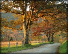 Autumn on Sparks in beautiful Cades Cove.