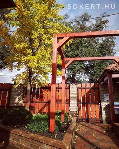 """29 kedvelés, 0 hozzászólás – SD KERT - Spiegel Ákos (@topgarden) Instagram-hozzászólása: """"#előkert #pergola #gardening #kertépítés #kerttervezés #letisztult #ginko #ősz 🌿"""" Pergola, Arch, Outdoor Structures, House Styles, Garden, Instagram, Home Decor, Longbow, Garten"""