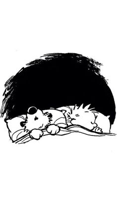 If only we could stay home all day in my nice warm bed and sleep the winter away.