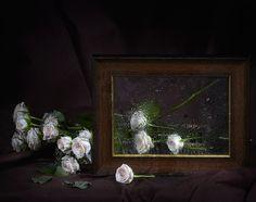 Фотография С рамочкой. Автор Ludmila Voytovich.