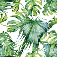 Seamless watercolor illustration of tropical leaves, dense jungle. Banner with tropic summertime motif may be used as background texture, wrapping paper, textile or wallpaper design. Vinyl Wallpaper - Plants and Flowers Plant Wallpaper, Tropical Wallpaper, Vinyl Wallpaper, Washable Wallpaper, Photo Wallpaper, Hibiscus, Tropical Background, Palmiers, Tropical Pattern