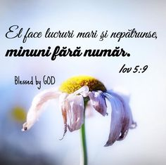 Bible Quotes, Bible Verses, He First Loved Us, Blessed Is She, Bless The Lord, Jesus Loves You, King Of Kings, God Jesus, Gods Love