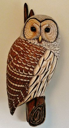 Barred Owl Life size wood carving by Tim McEachern www.natureswings.org