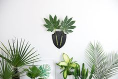 Inspiration for your home | Decorating with greens