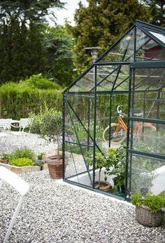 Tuinkas - Kas - Moestuin - Green House - Green - Garden - Vegetables - Kitchen - Modern - Glass <3 Fonteyn