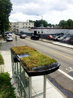 green roof bus shelter