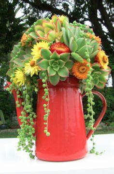 Red succulent plant holder