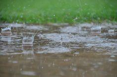 Dancing Rain By David Daugherty