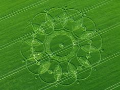nice Crop Circles