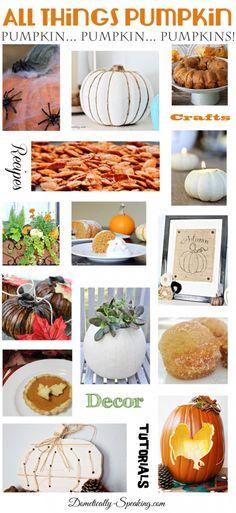 All Things Pumpkin 50+ Pumpkin Crafts Recipes Decor and More