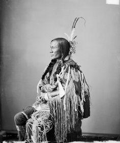 Wanagi Tatanka,  BUffalo Bull's Ghost, Lower Yanktonai