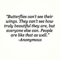 Piccsy :: Butterflies can't see their wings . . .