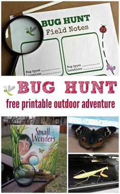 Free printable Bug Scavenger Hunt for kids - great book & activity that peeks into the world of insects!