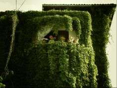 BEAUTIFUL ivy covered house, Dumbrava Rosie Street, Bucharest, Romania posted by Dana Mihet Bucharest Romania, Space Place, Timeline Photos, Art And Architecture, Europe, Exterior, Undercover, Country, Street
