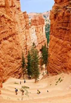 Navajo loop Trail, Bryce Canyon, Utah_ USA