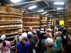 Thử nước mắm cốt Phú Quốc cảm nhận hương vị đậm đà Seafood Store, Wood, Woodwind Instrument, Timber Wood, Trees