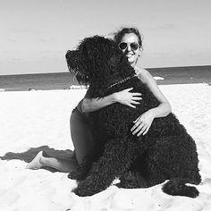 Mimolena & Kron #blackrussianterrier