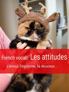 """33 French vocabulary to express """"attitudes"""" (les attitudes) Ap French, French History, French Words, Learn French, French Teaching Resources, Teaching French, Teaching Activities, Common French Phrases, French For Beginners"""