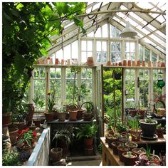 Lovely old greenhouse at Bryan's Ground in Herefordshire, UK. Image Loraine Young/Verve Garden Design