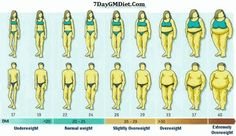 How to reduce body fat fastly picture 1