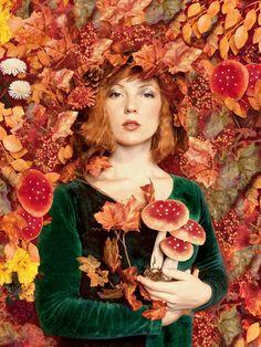 Mushroom portrait by Loli Maeght