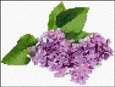 I love lilacs. free chart.