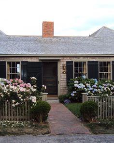 Shingles, black shutters, picket fence, climbing roses