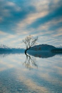 Lake Wanaka on New Zealand's South Island.  Story and photos by Jimmy Raper.
