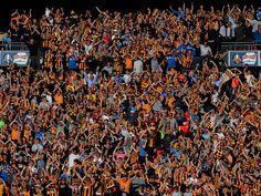 @Hull tigers fans #9ine