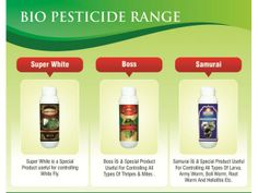 Biopest - Range  We have complete Biopesticide range for control of Whitefly / All kinds of Larva/Mites & thripes  Dose : 20 ml per 15 ltr of water.Highly effective.  for more details: http://www.agribazaar.co/index.php?page=item&id=1784   When you call, don't forget to mention that you found this ad on www.agribazaar.co
