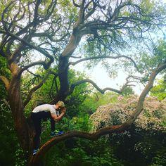 "238.8k Likes, 3,532 Comments - Jacksepticeye (@jacksepticeye) on Instagram: ""Nature is """