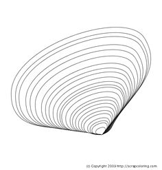 1000 images about rocks shells for mike on pinterest for Clam coloring page