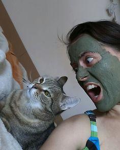 #mannaszappan #cat #bravecat