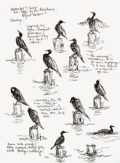 Sketchbook Wandering: Penobscot Bay