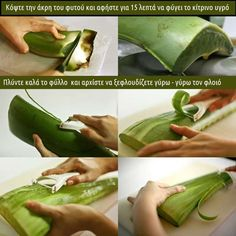 How to make fresh aloe vera gel and juice at home Aloe vera is amazing plant which is also known as the plant of immortality. Aloe vera has been used for many purposes since ancient times. Aloe vera plant is a miracle plant and has many skin and hai Natural Home Remedies, Natural Healing, Herbal Remedies, Aloe Vera Skin Care, Aloe Vera Gel, Aloe Vera For Skin, Health And Beauty Tips, Health Tips, Health Benefits