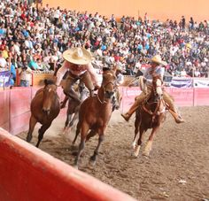 (Photo from asociacionnacionaldecharros.com)  The aptly named paso de muerte, or pass of death, is a feature of charreria, the Mexican-bred precursor to American rodeo. In the 1990s, the sport's efforts to find U.S. footing were reined by Arizona's Fred Chavez, who found himself caught between animal activists on one side and cross-cultural challenges on the other -- even as he led his own team of charros into national competition. A long read, but one of my favorite subculture experiences…