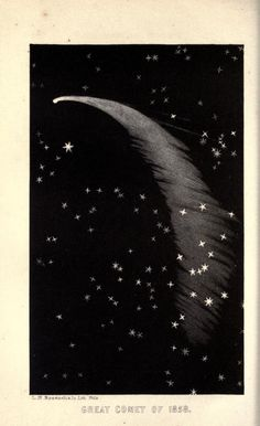 A Popular Treatise on Comets, James C. Watson, 1861.