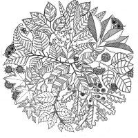 http://www.coloring-pages-adults.com/coloring-flowers/nggallery/page/3?image=fleurs-et-vegetation__coloring-adult-flowers-vegatation-mandala__1